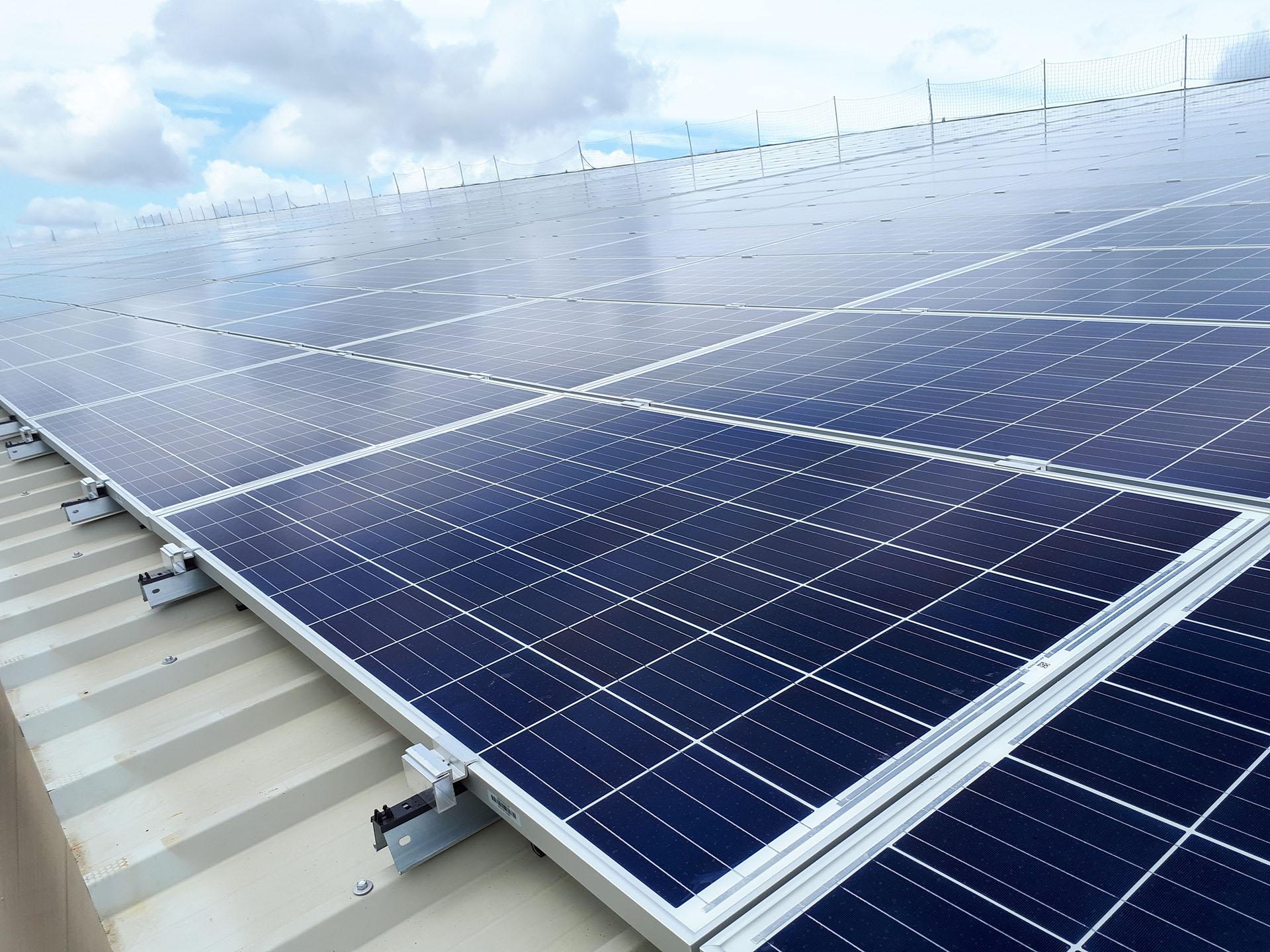 Trois Toitures Photovoltaiques Pour L Elevage D Animaux En Etables Dome Solar
