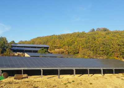 Photovoltaic roofs of a horse-riding arena